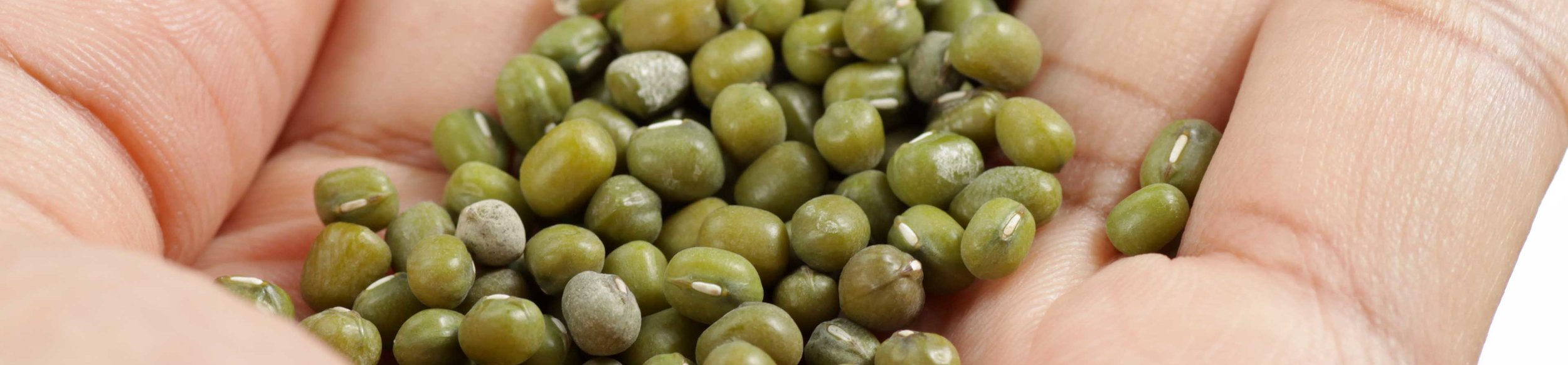 Mung beans make an ideal addition to a well-balanced and healthy diet.