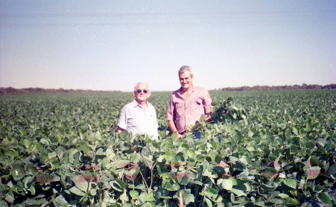 In 1996, Cono expanded in Santiago del Estero and started cultivating pulses.