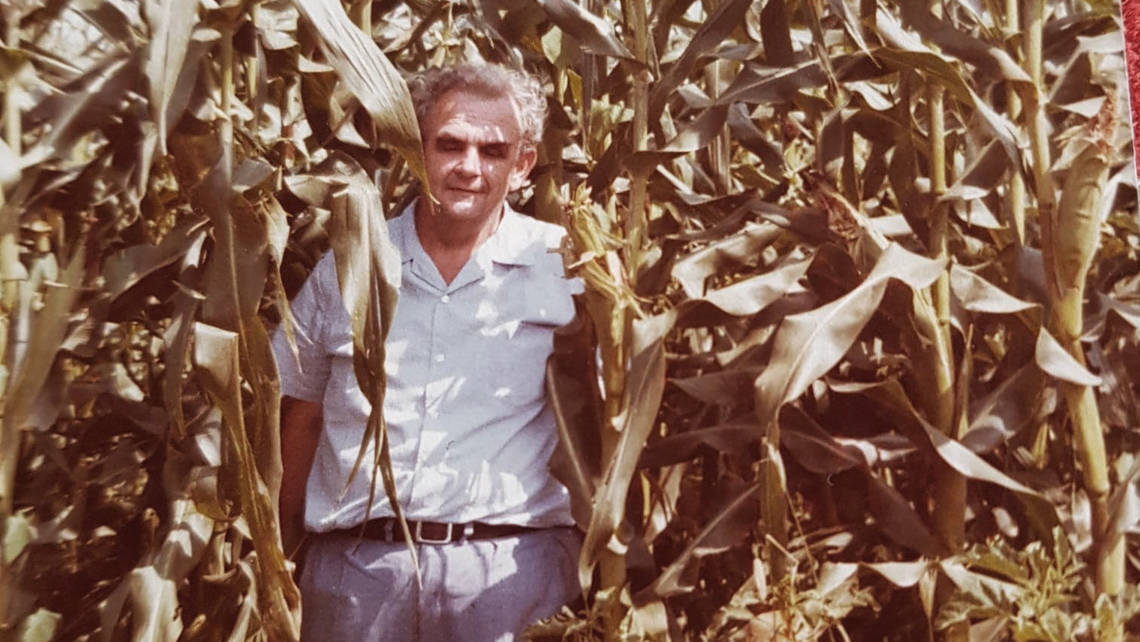 In 1990, Cono started growing soy and corn commodities.