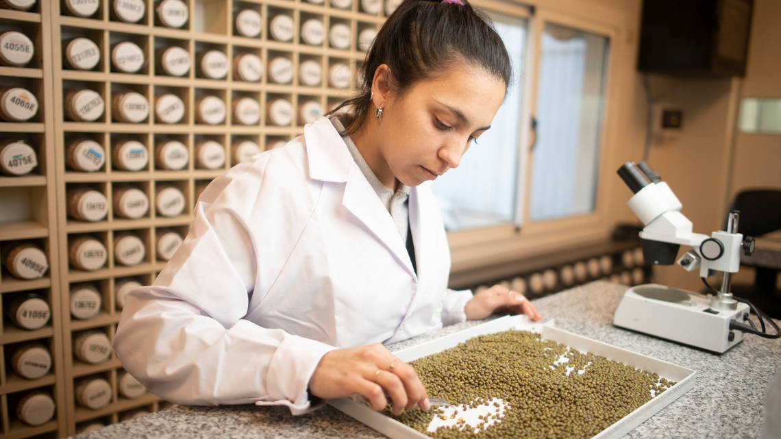Cono maintains internal testing and selection programmes to find the best seeds and crop each year.